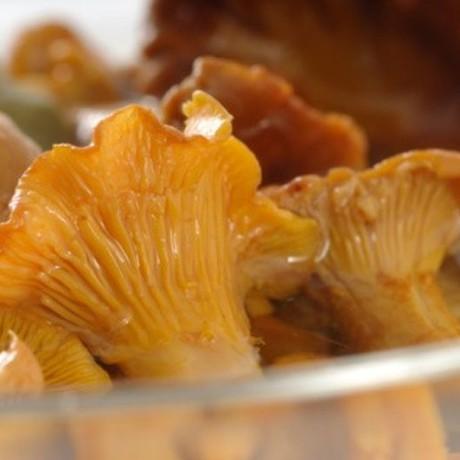 Маринованные грибы лисичка